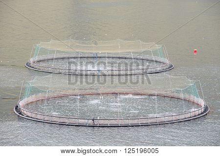 Closeup of a salmon farm net on the Faroe Islands