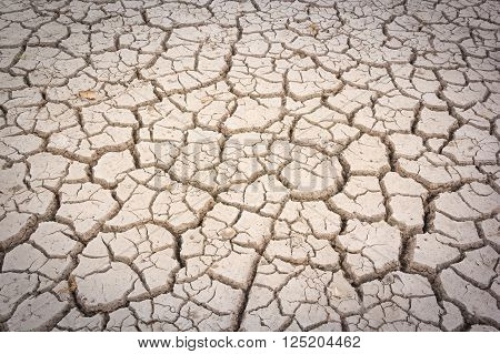 Cracks in the dried soil in arid season.