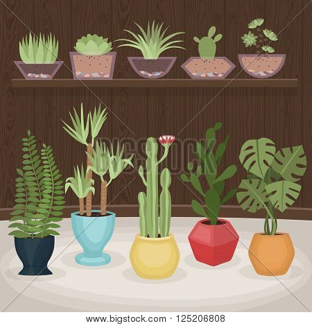 Cute houseplants collection. Flat design. Vector illustration.
