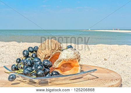 Still life with grapes and seashells on the beach against the sea and blue sky on a sunny summer day