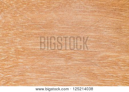 Texture of wood background closeup (Wood Pattern)