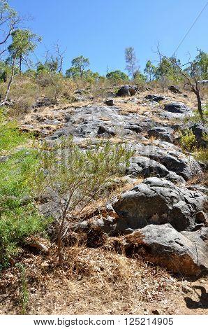SERPENTINE,WA,AUSTRALIA-JANUARY 30,2014: Natural granite rock wall landscape with plants in Serpentine National Park in Serpentine, Western Australia.