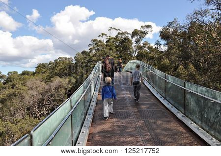 PERTH,WA,AUSTRALIA-NOVEMBER 29,2013: Tourists walking over the elevated pedestrian bridge in the tree tops at King's Park Botanic Garden in Perth, Western Australia.
