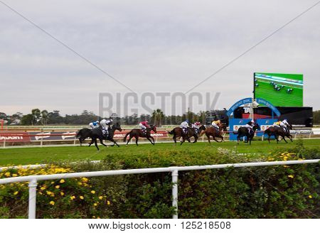 BURSWOOD,WA,AUSTRALIA-MAY 30,2014: Jockeys racing horses around the green manicured lawn at the Belmont Park Racecourse with LED screen in Burswood, Western Australia.