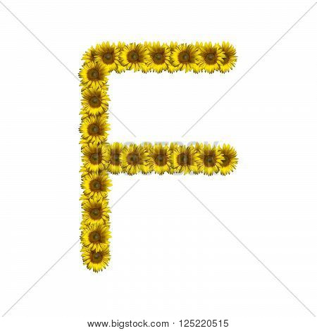 Sunflower alphabet isolated on white background, letter F