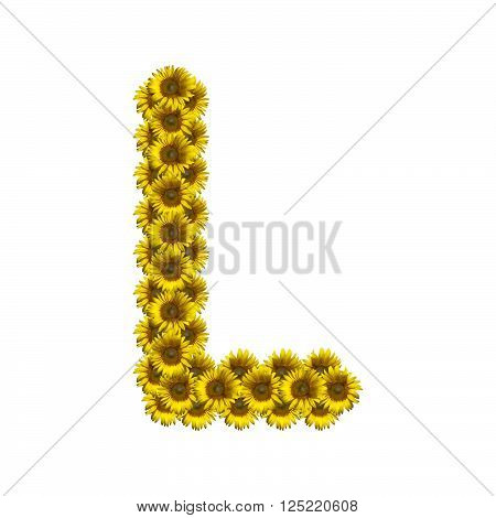 Sunflower alphabet isolated on white background, letter L
