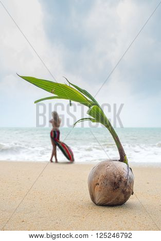 Fresh Coconut on the beach with woman standing on background focused on the coconut