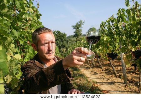Man looking at color of wine in drinking glass