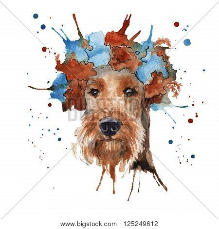 the dog the Airedale Terrier in headdress made in the form of a wreath of flowers. isolated. Watercolor