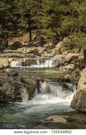 Mountain Stream Near Albertacce In Corsica