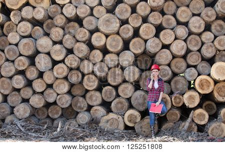 Woman Forestry Engineer Beside Trunks