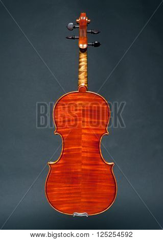 a perfect wood violin on black background