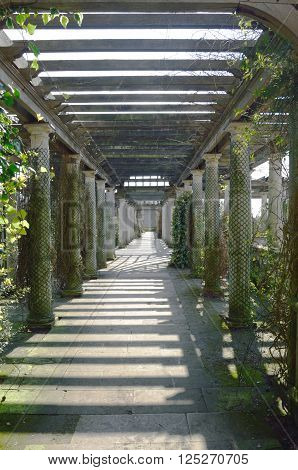 Wooden garden passage way in formal garden