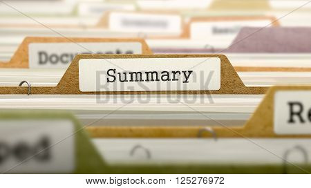 File Folder Labeled as Summary in Multicolor Archive. Closeup View. Blurred Image. 3D Render.