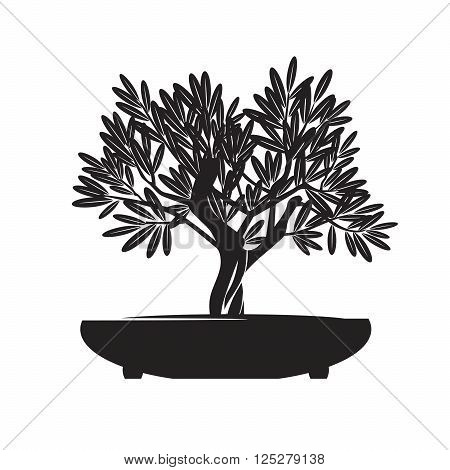 Black Bonsai Olive Tree. Vector Illustration and Graphic Design.