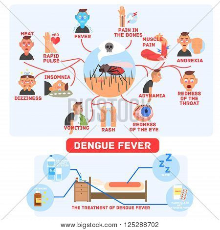 Dengue Fever Infographics Fun Flat Vector Illustration In Simple Cartoon Design With Text