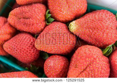 Big Fresh Strawberries