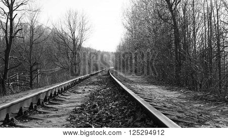 Abandoned railway in the middle of a forest