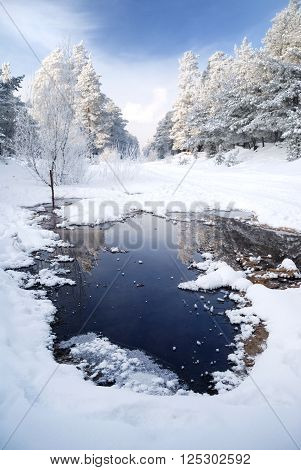 Small frozen winter lake landscape. Trees covered with snow.