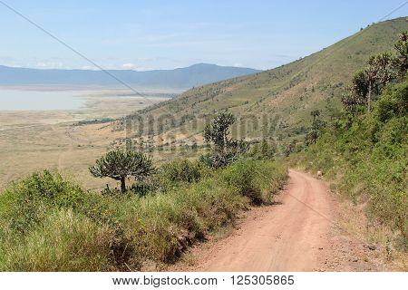 Road Along The Rim Of Ngorongoro