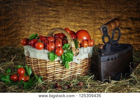 Harvest of Cherry Tomatoes in the Basket