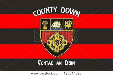 Flag of County Down is one of six counties that form Northern Ireland situated in the northeast of the island of Ireland.