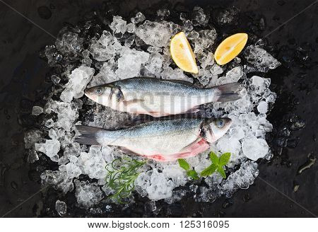 Raw seabass with lemon and rosemary on chipped ice over dark stone backdrop, top view, horizontal