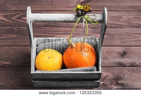 Two Small Decorative Pumpkins