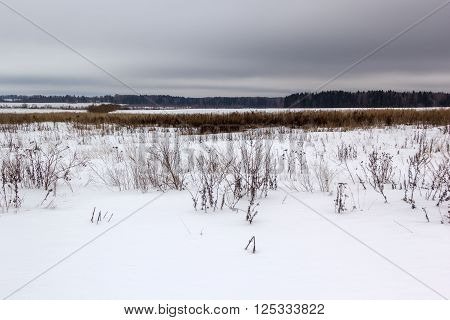 snow covered field under gloomy gray skies