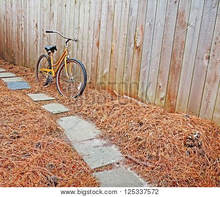An old bicycle sits propped up against a wooden fence with pine needles below.