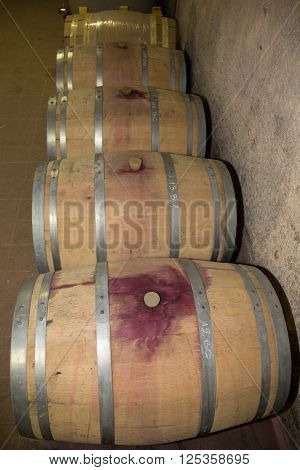 Beautiful Wooden Barrels In A Winery. Wine Cellar