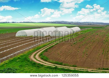 Greenhouse farming cultivated landscape with arable soil white clouds over blue sky.
