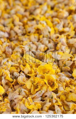 Background made from dry yellow mullein flowers