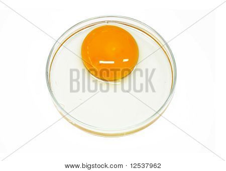 Egg in glass plate