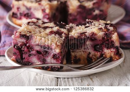 Sponge Cake With Blueberries Close-up On A Plate. Horizontal