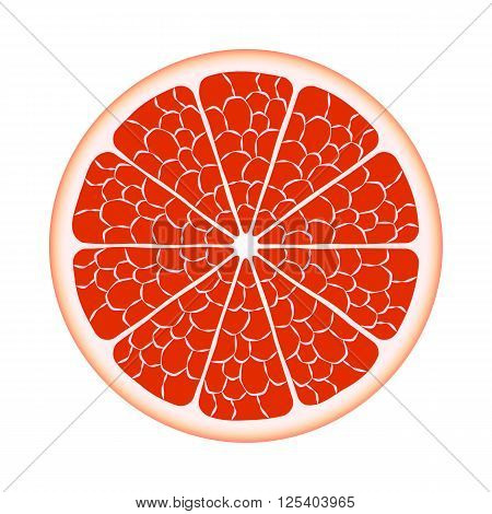 Grapefruit in the slit closeup. Vector EPS10