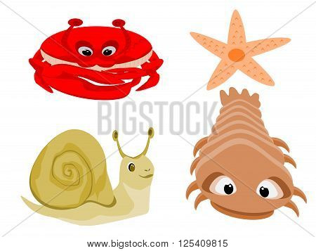 Crab, starfish, snail and horseshoe crab vector isolated on white background