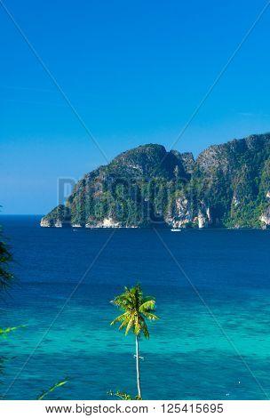 Blue Seascape High Cliff