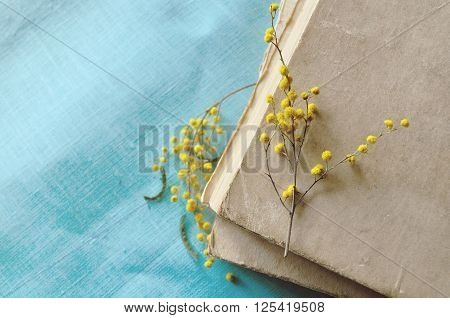 Vintage still life - stack of old books with yellow mimosa flowers. Selective focus at the mimosa lying on the hardcover. Yellow pastel processing.