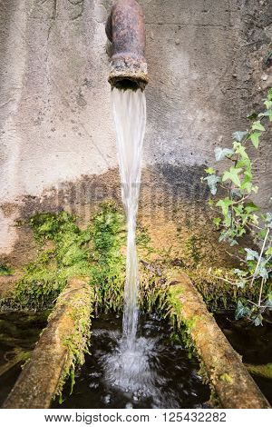 A trickle of water falls into a tub of old mossy stone.