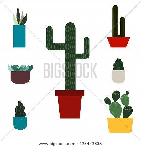 Cactus set. Flat style. Vector illustration Green plants icons. Desert nature. Tropical flower. Modern style.
