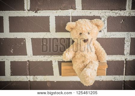 teddy bears in normal environments with no one there