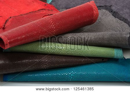 Stingray exotic hide, leather, skins in five colours