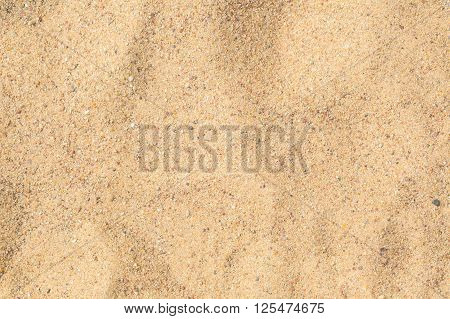Close Up Of Sand Texture. Dry Sand Photographed At Sunny Day