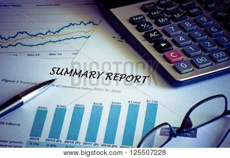 The Financial accounting summary report graphs analysis