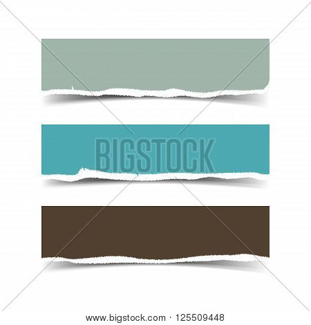 Collection of three web banners torn paper with space for your text isolated on white. Vector torn paper with ripped edges for websites.