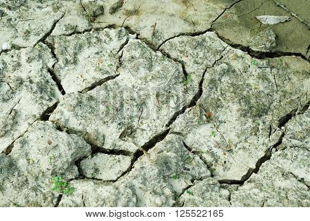 Mud dry background or texture waterless cracked ground