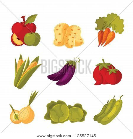 big set of different vegetables, tomato, zucchini, cabbage, corn, carrots, potatoes, colorful veggies isolated on white background, farm food, garden stuff in the arrangement
