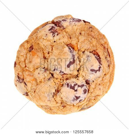 Single freshly baked homemade chocolate and buterscotch chip oatmeal cookie isolated against a hite background