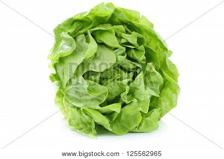Head Cabbage Lettuce Organic Vegetable Isolated On White